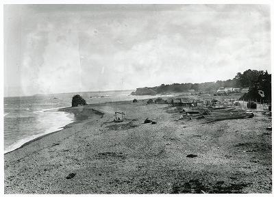 安乗村海岸