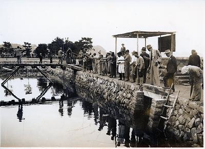 戦後のミキモト真珠島の風景1